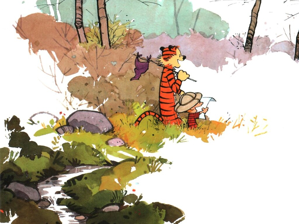 Calvin Und Hobbes Fansite Wallpaper